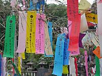 機物神社(七夕)