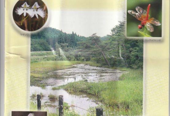 唐津樫原湿原見学1IMG_20200425_0001のサムネイル
