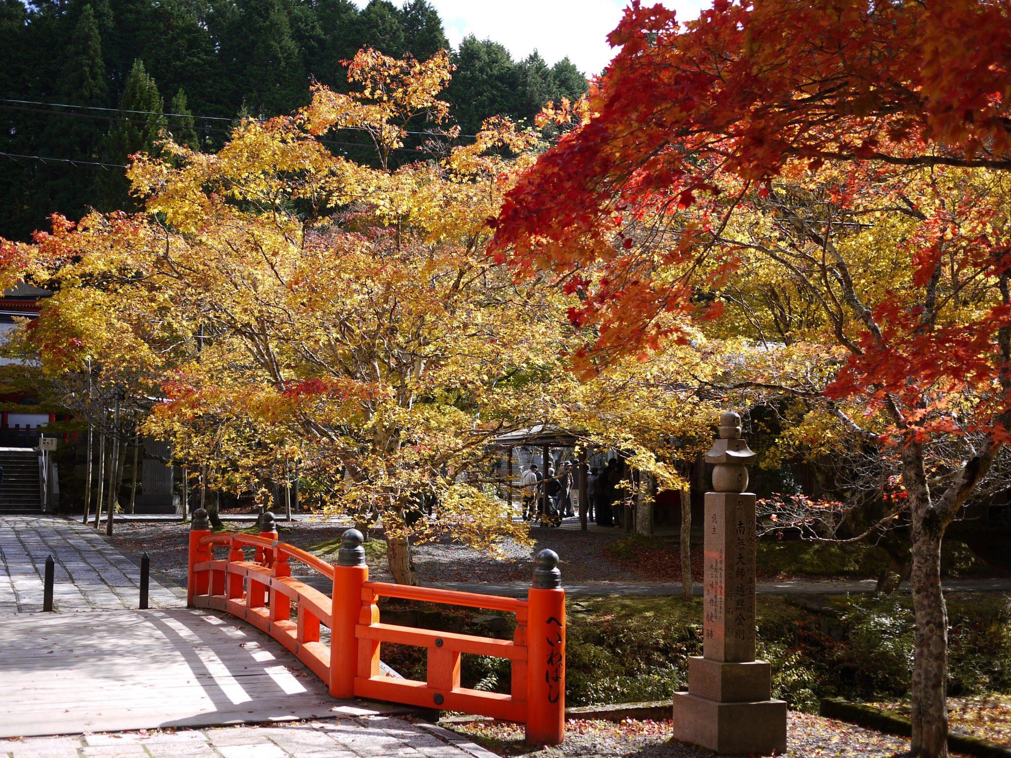 高野山平和橋