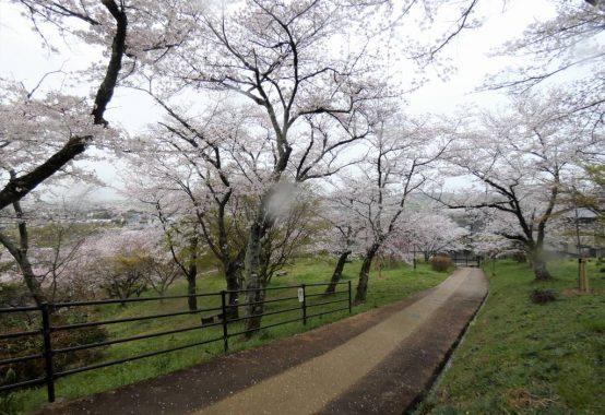 竜田川・三室山